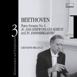 Beethoven : Piano Sonatas & Symphonies Volume 3详情