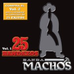 25 Bandazos de Machos (Vol. 1) (USA)详情