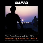 The Cafe Mambo Ibiza EPs selected by Andy Cato Part 2详情