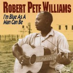 Vol. 1 - I'm Blue As A Man Can Be详情