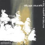 Golden Triangle / The Fresh & Onlys Split 7详情
