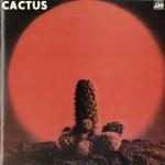 Cactus详情