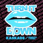 Turn It Down (Remixes)详情