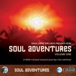 Soul Adventures Volume 1: A Journey Through Music to Healing and Relaxation详情