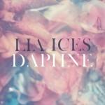 Daphne - Single详情