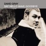 Say Hello, Wave Goodbye详情