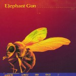 Elephant Gun详情