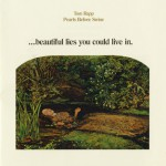 Beautiful Lies You Could Live in (US Release)详情