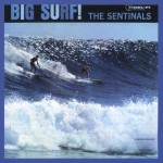 Big Surf (US Release)详情