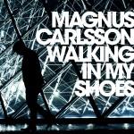 Walking In My Shoes详情