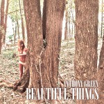 Beautiful Things (Deluxe)详情