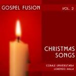 Gospel fusion Vol. II详情