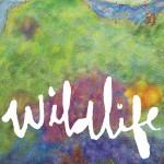 Wildlife详情