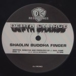 Shaolin Buddha Finger详情