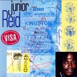 Visa详情