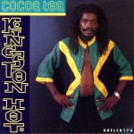 Kingston Hot详情