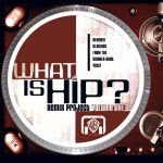 What Is Hip-Remix Project Vol. 1 (U.S. Version)详情