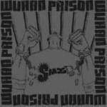Wuhan Prison详情
