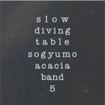 5辑 - Slow Diving Table详情