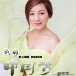 我的中国梦(单曲)详情