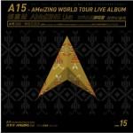 世界巡回演唱会 跨世纪盛典 启程未来式详情