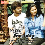Kerala Naatilam Pengaludane (Original Motion Picture Soundtrack)详情
