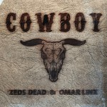 Cowboy (Remixes)详情