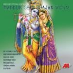 Madhur Geet Bhajan Vol. 2详情