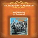 Los Llaneritos de Guamuchil详情