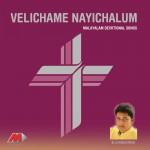 Velichame Nayichalum详情