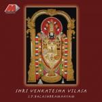Shri Venkatesha Vilasa详情