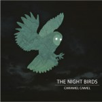 The Night Birds详情