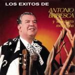 Antonio Bribiesca y Su Guitarra Mexicana详情