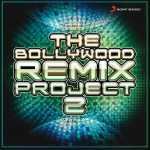 The Bollywood Remix Project, 2详情