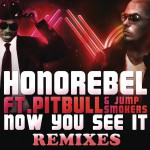 Now You See It (Remixes)详情