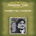 Guadalupe Trigo - Instrumental详情