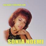 Baladas y Boleros Con Sonia Noemí详情