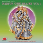 Madhur Geet Bhajan Vol - 1详情