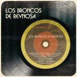 Los Broncos de Reynosa详情