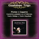Poetas y Lugares Conciertos Grabados en el Polifórum, Teatro Hidalgo y Teatro De详情