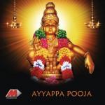 Ayyappa Pooja详情