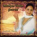 Mitthiyan Yaadan Guzre Pal详情