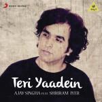Teri Yaadein (From