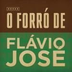 O Forró de Flávio José详情