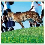 Team N 2nd Stage 「青春ガールズ」详情