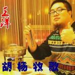 胡杨牧歌(单曲)详情