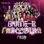 广东卫视2014跨年晚会详情