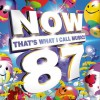 欧美群星 - Now That's What I Call Music! 87 试听