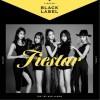 FIESTAR - Black Label 试听