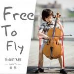 自由的飞翔 (单曲)详情